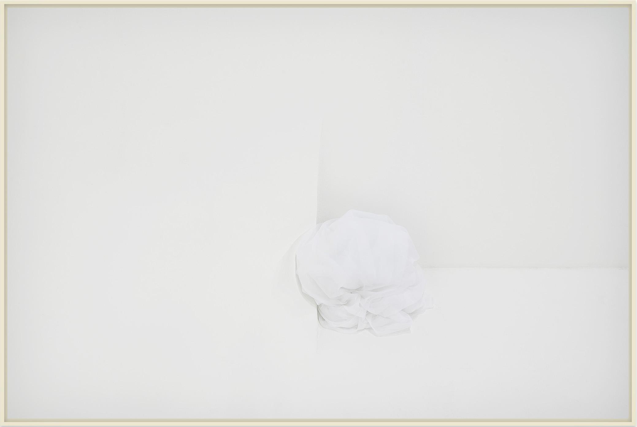 Site _ Stilness (white) _ Antonio Wolff _ 2018 _ fotografia em papel fibra de algodao – 62×42 cm _ soma galeria
